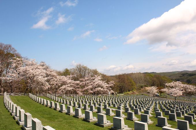 「戸田記念墓地公園」ならではの光景が!