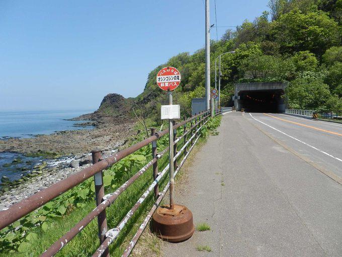 「オシンコシンの滝」前のバスの停留所🎵