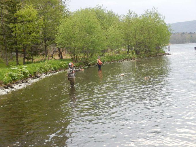 釣りを楽しむ観光客が訪れます