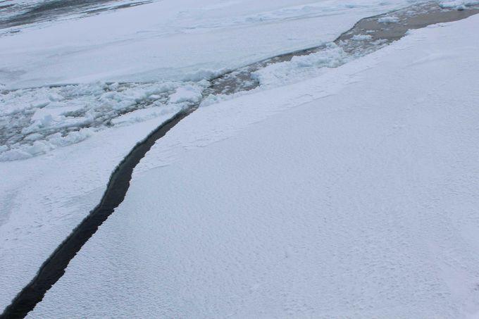オホーツクの流氷が割れる瞬間!