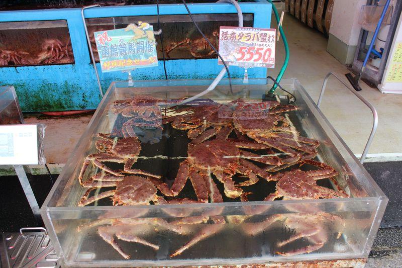 函館の旨い物満載・食のワンダーランド・日本一の「函館朝市」へ行ってみよう♪