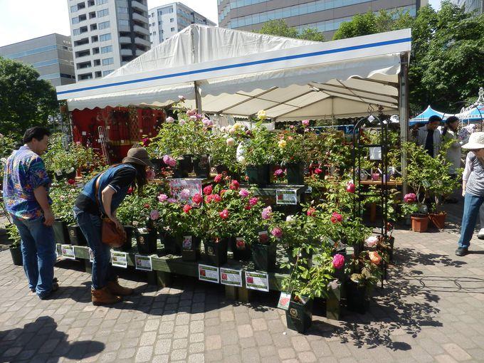 花市やガーデニンググッズの販売