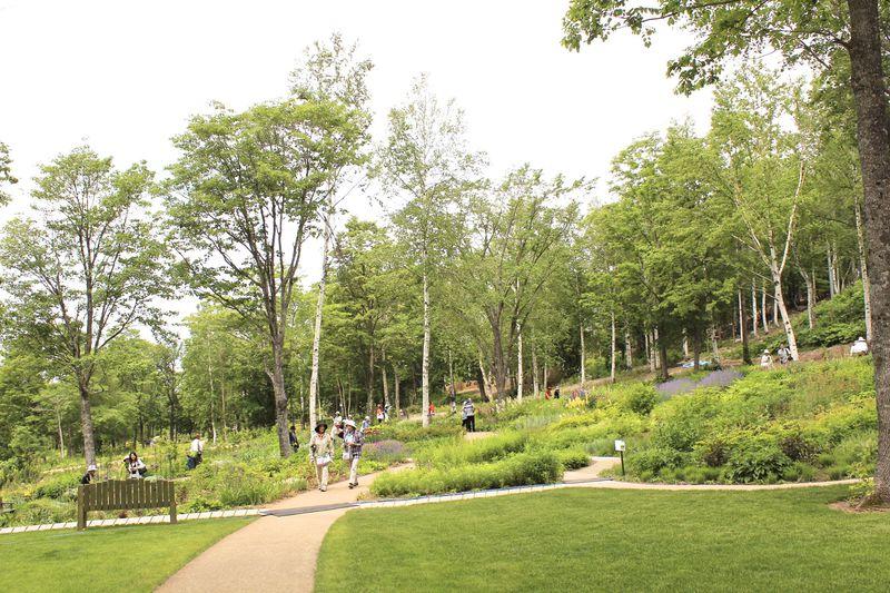 北海道ガーデン街道に8つ目の庭園が!「大雪森のガーデン」♪
