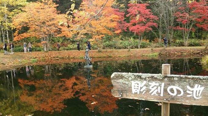 紅葉が映る「彫刻の池」