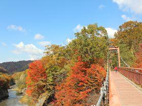 北海道「夕張滝の上自然公園」で二つの橋から紅葉鑑賞!メロンも美味