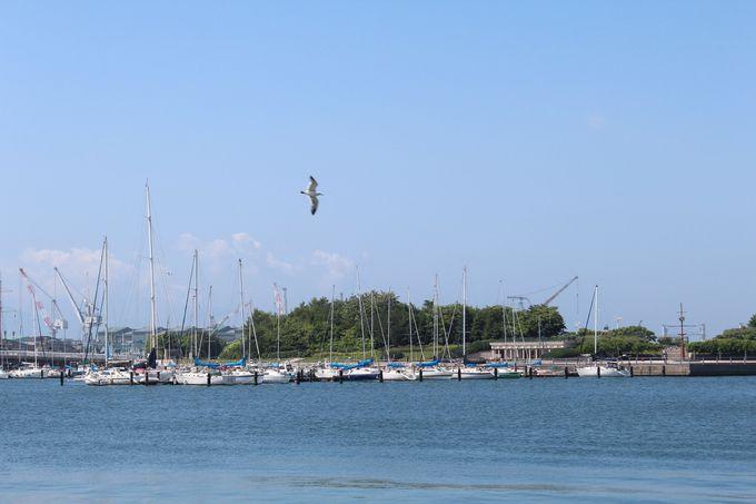 ベイエリアから見える緑の島とヨットハーバー