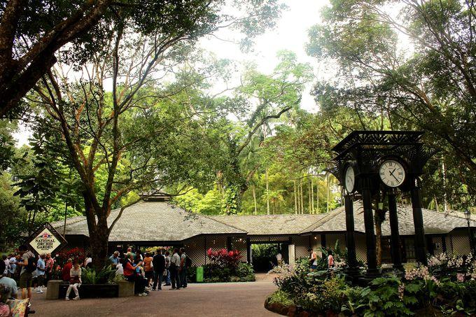 シンガポール植物園内の「国立蘭園」