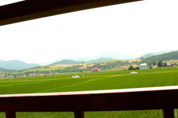 車窓からパッチワークの丘と田園風景を鑑賞!