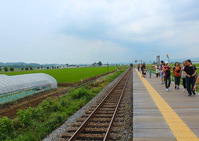 夏限定!「ラベンダー畑駅」ホーム