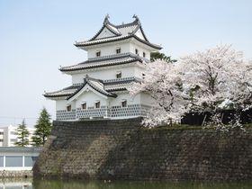 桜とのコラボが美しい!春爛漫の新潟「新発田城」