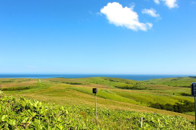 周氷河地形として北海道遺産に登録された「宗谷丘陵」!