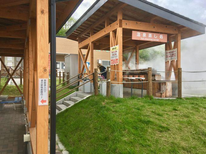 「道の駅 しかべ間歇泉公園」で蒸し処を楽しもう!