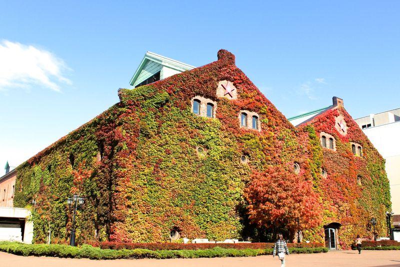札幌のおすすめ紅葉スポット10選 錦色の絶景が目白押し!