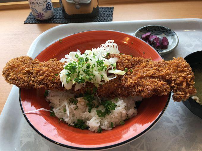 1000円以内でいただけるランチやディナーも!