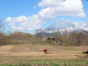 北海道羊蹄山麓で道の駅巡り!晴れの日の春雪山はインスタ映え必至