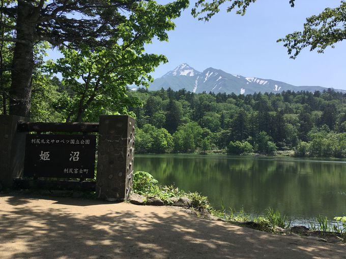 利尻山を背景に美しい姫沼