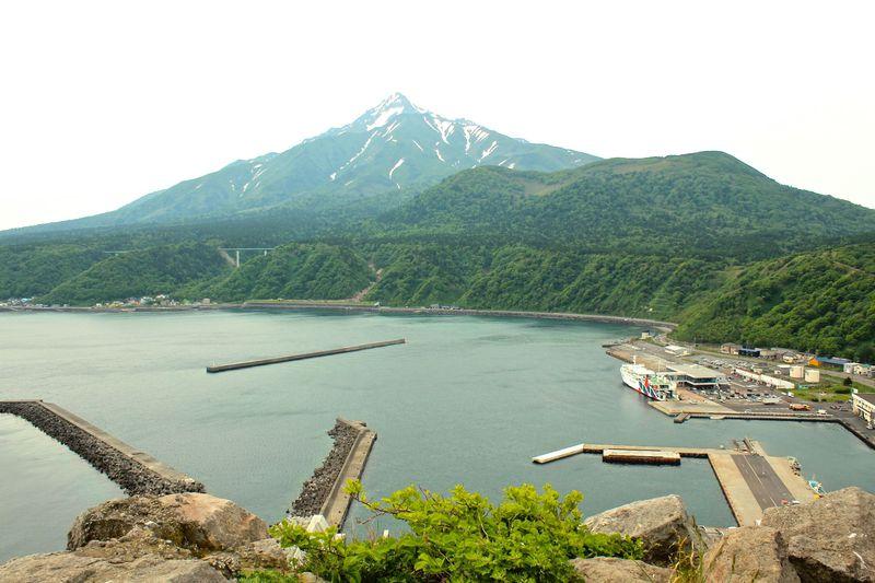 絶景の利尻島「ペシ岬展望台」は高山植物の時期がお勧め!