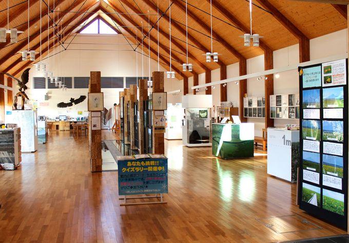 「サロベツ湿原センター」で自然を学ぼう