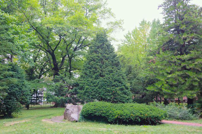 美しい庭園も!