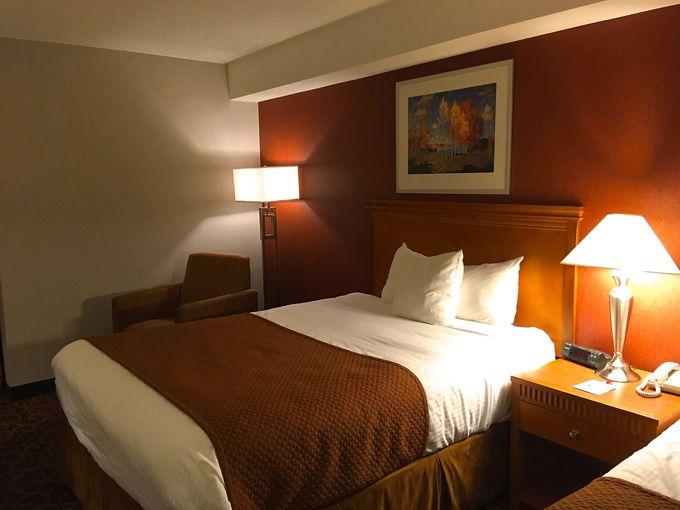 大きなベッドのシックな客室