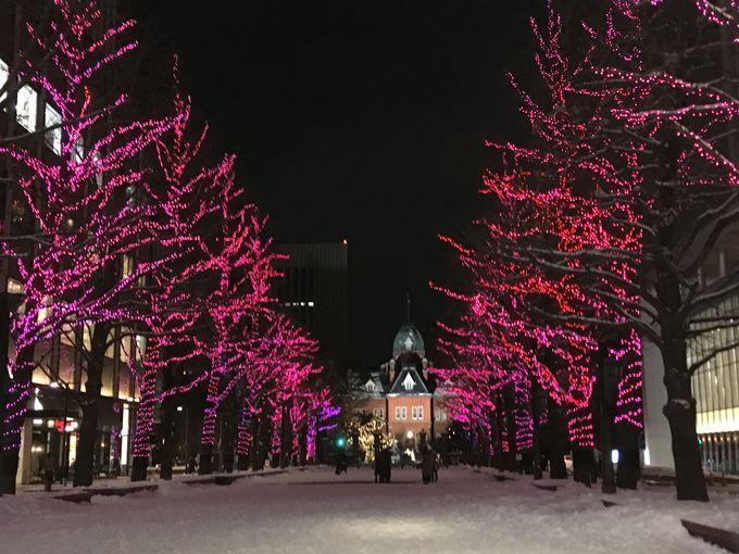 札幌、冬の風物詩「さっぽろホワイトイルミネーション」