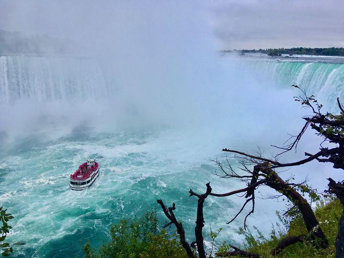 ナイアガラ の 滝 難破 船
