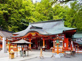 世界遺産「熊野古道」大門坂から那智の滝まで初心者コースを散策