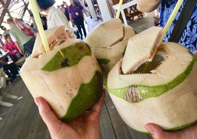 「ココナッツジュース」を飲んでみよう