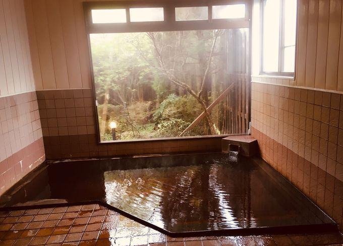源泉掛け流しの内風呂も