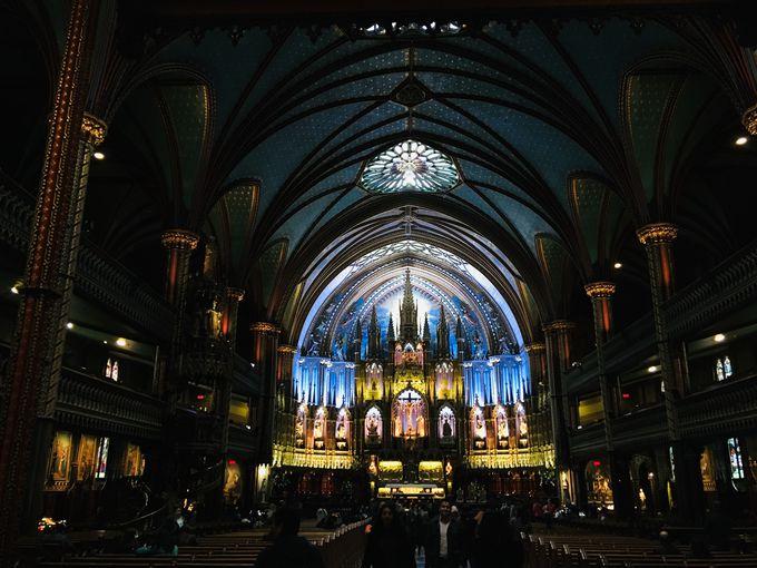 観光名所「ノートルダム大聖堂」からスタートしよう