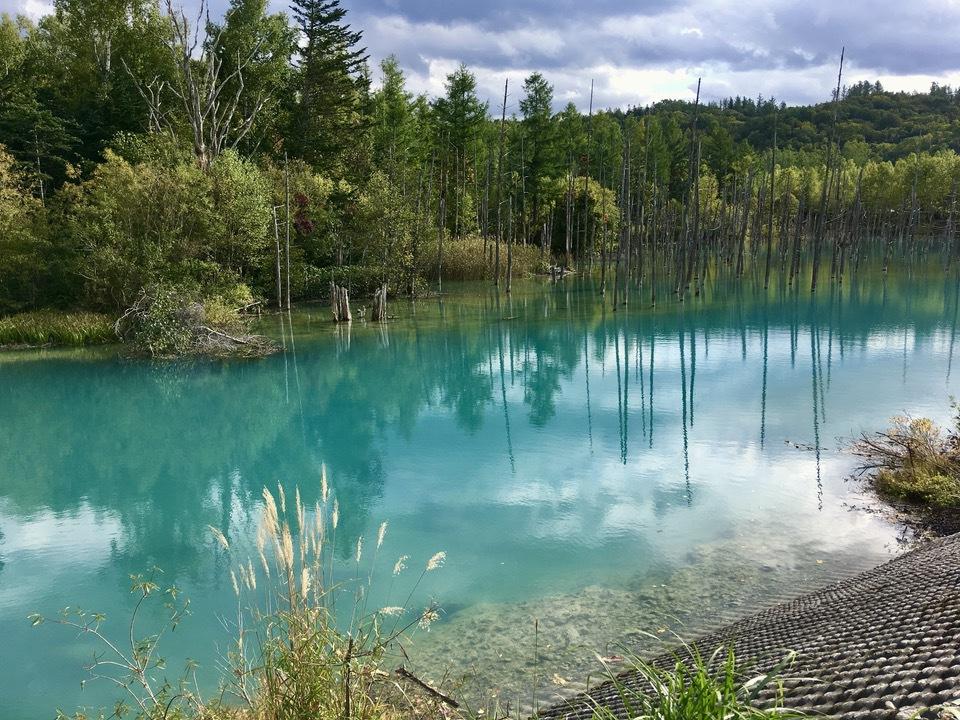 人気スポット「青い池」とは