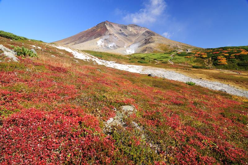 9月中旬からもう紅葉!北海道「大雪山旭岳」空中散策&ハイキング