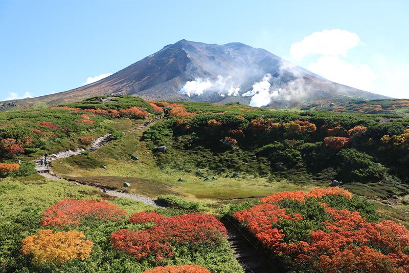 紅葉の「カムイミンタラ」散策コース