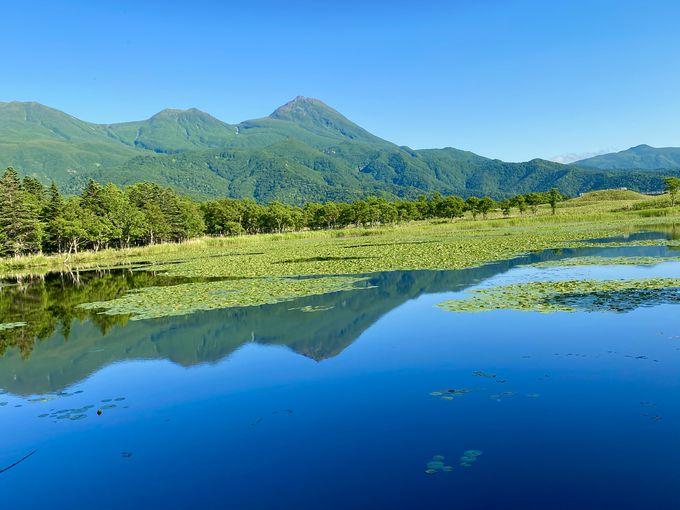知床第一ホテルを拠点に四季の知床観光を楽しもう!