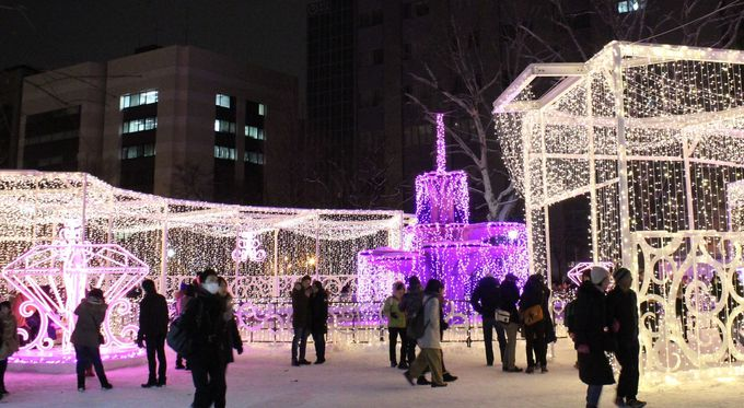 雪と光の共演を楽しもう!