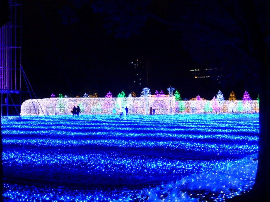西の丸庭園を入ると出迎えてくれるのは、光の回廊と光のビックブルー