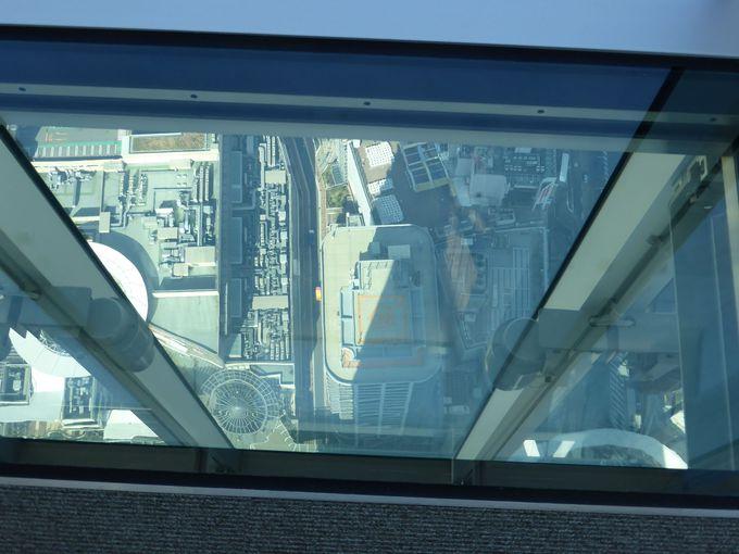 60階西側は、一部ガラスの床