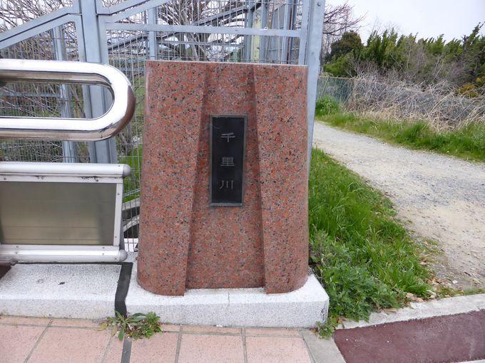 アクセス不便、でも、本数は少ないですがバスを利用する事も可能