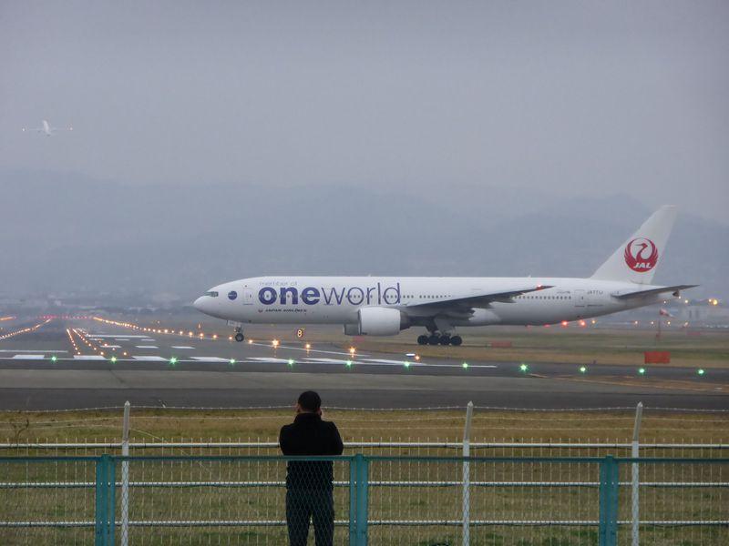 飛行機に手が届きそう?大阪国際空港!迫力満点の着陸スポットは土手