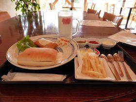 別海ジャンボ牛乳&ジャンボホタテバーガー!おいしい北海道を食べに行こう!
