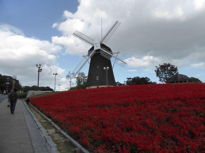 10.「花博記念公園鶴見緑地」で風車を楽しむ/大阪府