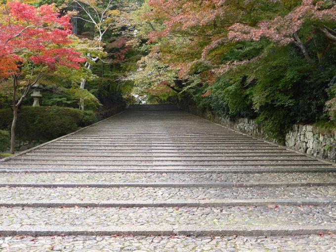 長くゆっくりな「光明寺」の石段