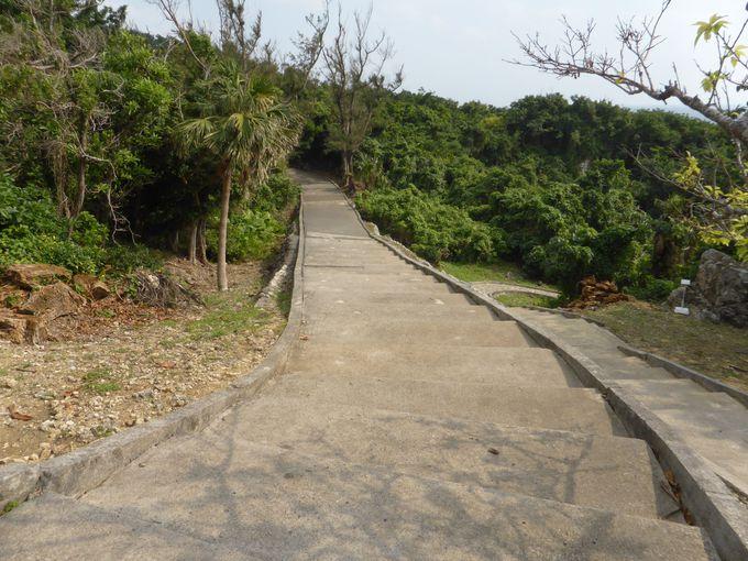 「沖縄師範健児の塔」へと続く道