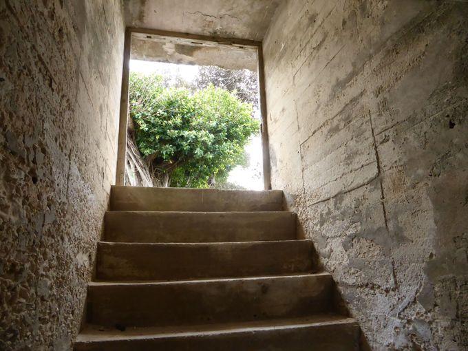 地下壕に入る事もできます。