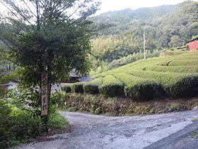 都会っ子が里山のAirbnbで田舎体験してみた