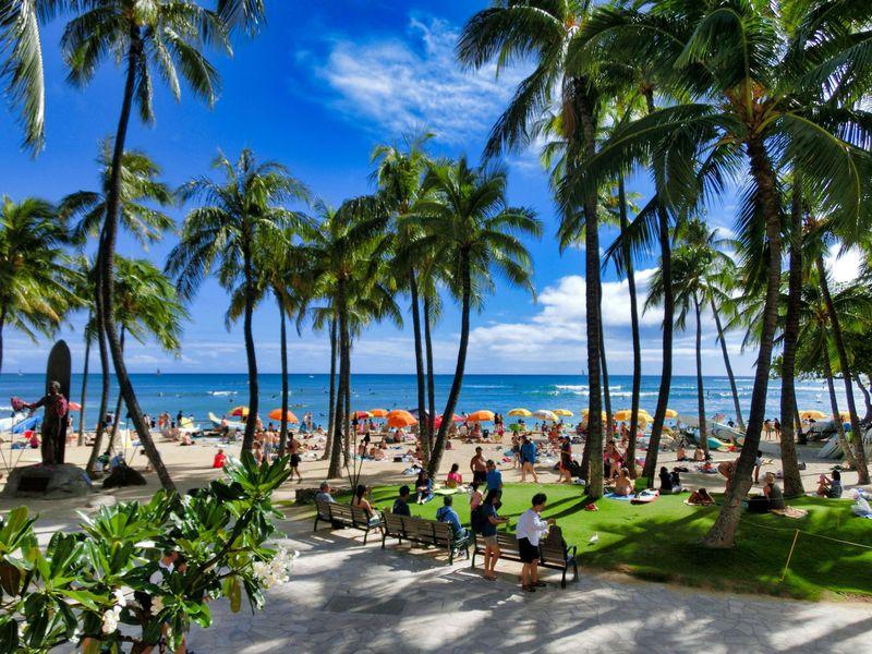 ハワイ行きの直行便はある?LCCで安く行く方法もチェック