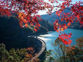 1日限りのレア絶景!日本三大秘境の紅葉とダム放流