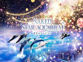 品川「NAKED STAR AQUARIUM−星空のクリスマス−」開催