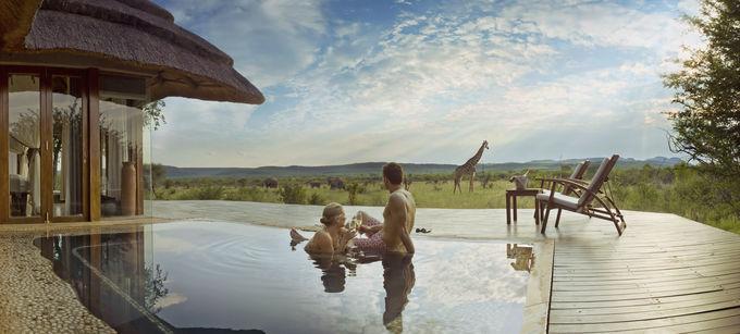 夏休みは南アフリカでサファリ体験!最高の自由研究を