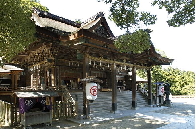 うどん県から徳島へ伝統、芸術から自然美を堪能。 (香川〜徳島モデルコース2日目〜3日目)
